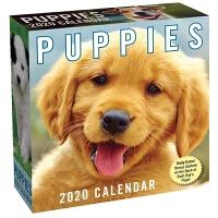 2020日历 小狗 萌宠 PUPPIES 2020 DAY-TO-DAY CALENDAR