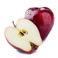 甘肃花牛苹果【5斤装约15个】包邮香甜多汁粉面可口 原产地现摘现发