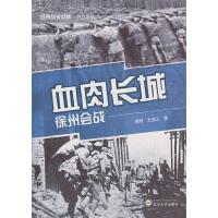 血肉长城:徐州会战