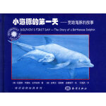 小海豚的第一天:宽吻海豚的故事――海洋动物玩具系列