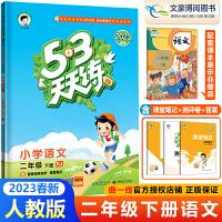 53天天练二年级下语文部编人教版 2021春二年级下册语文53同步练习册