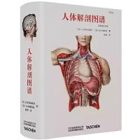 人体解剖图谱 中英对照版T Altas of Human Anatomy 真人比例 人体手绘手稿艺术画册700余幅彩色