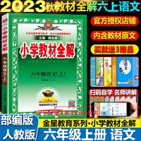 小学教材全解六年级下语文下册人教版2020春部编版薛金星
