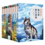 动物小说大王沈石溪vs西顿金品系列(共八册,含狼王梦,最后一头战象等)