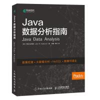 Java数据分析指南 数据挖掘 数据预处理 数据可视化 数据统计 数据结构与算法分析 数据分析人员参