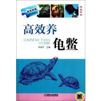 高效养龟鳖(双色印刷)/高效养殖致富直通车 朱新平
