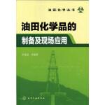 油田化学丛书--油田化学品的制备及现场应用