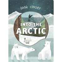 Look Closer into the Arctic