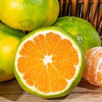 【包邮】宜昌蜜桔5斤装酸甜多汁鲜嫩化渣孕妇水果