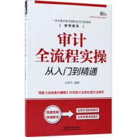 审计全流程实操从入门到精通 中国铁道出版社