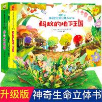 好好玩立体书3--6岁好好玩神奇的生命立体书 蚂蚁的地下王国 远行的刺猬儿童3d立体书翻翻书洞洞书籍0-3-6周岁幼儿