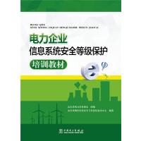 电力企业信息系统安全等级保护培训教材