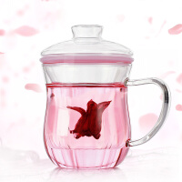 耐高温过滤透明玻璃杯个性茶杯套装 办公茶杯加厚窈窕杯350ML玻璃茶杯带盖办公家用水杯杯子