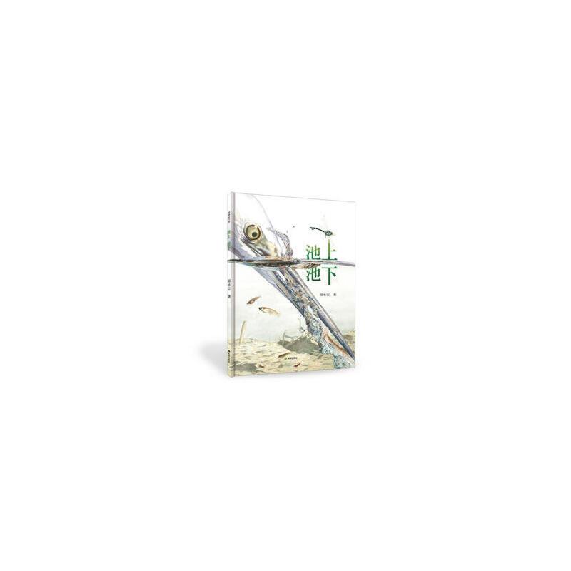 池上池下 (台湾知名生态绘本作者邱承宗力作:荣获首届丰子恺优秀儿童图画书奖,荣获第三十三届金鼎奖——优秀科学类图书奖!聚焦在池上池下的生态景观。耕林童书馆出品。)