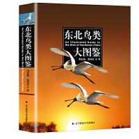 东北鸟类大图鉴