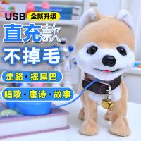 儿童电动玩具狗泰迪牵绳小狗狗充电仿真毛绒会走叫跑遥控智