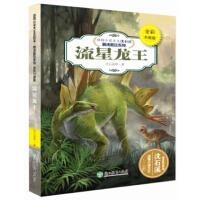 动物小说大王沈石溪・精读酷玩系列(全彩升级版):流星龙王