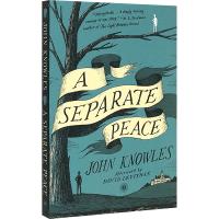正版 A Separate Peace 独自和解 英文原版青春小说 一个人的和平 英文版 另一种和平 电影原著 可搭麦田