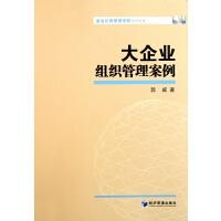 大企业组织管理案例/基业长青管理学院系列专著