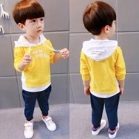 儿童长袖套装 男 秋款 1-4岁宝宝儿童运动套装 童装潮