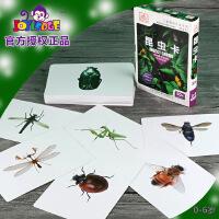 多乐智爱自然 昆虫卡 杜曼早教闪卡全脑开发闪卡益智闪卡
