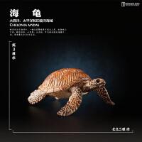 海洋野生海龟陆龟象龟金钱龟鳄龟乌龟模型儿童动物模型玩具