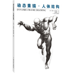 动态素描・人体结构(中文简体字版)