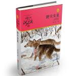 动物小说大王沈石溪・品藏书系:野犬女皇(升级版)