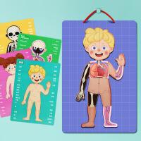 儿童早教人体认知拼图 拼拼乐宝宝磁力磁性挂板拼板幼教益智玩具