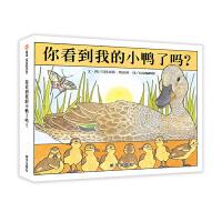信谊绘本:0-3岁阅读启蒙精选・你看到我的小鸭了吗