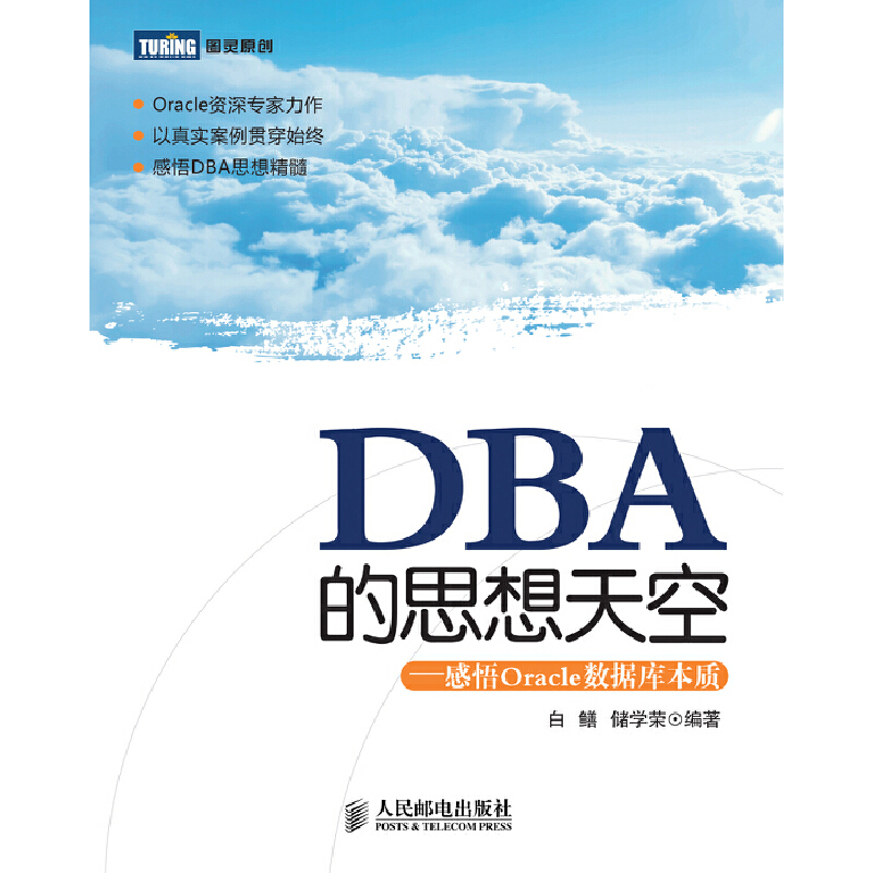 DBA的思想天空:感悟Oracle数据库本质【Oracle资深专家力作以真实案例贯穿始终】 PDF下载
